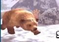 Lovec medvě...
