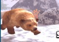 Lovec medvědů