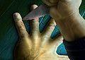 5 Finger Fil...
