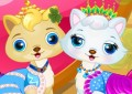 Pet Wedding Party beauty Saloon
