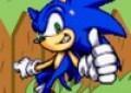 Sonic in Gar...
