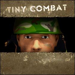 Tiny combat