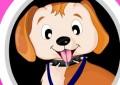 Puppy Show