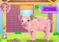 Amelia's Pig...