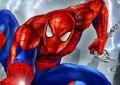 Spider-man C...
