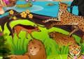 Animal Park ...