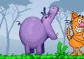 Hippo's Feed...