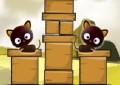 Pumpcat